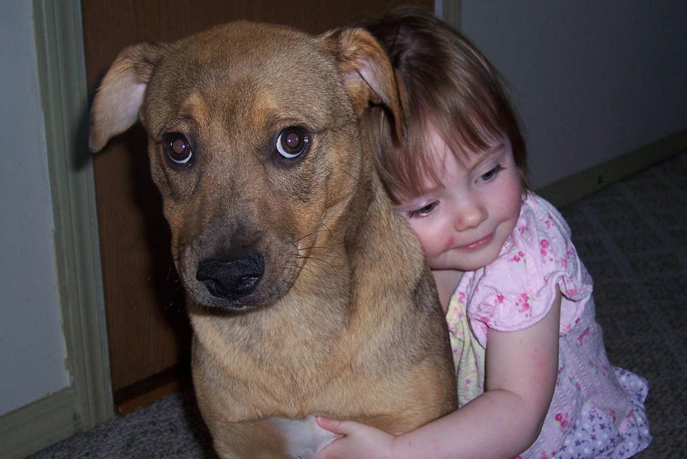 3 Ways to Hug a Dog
