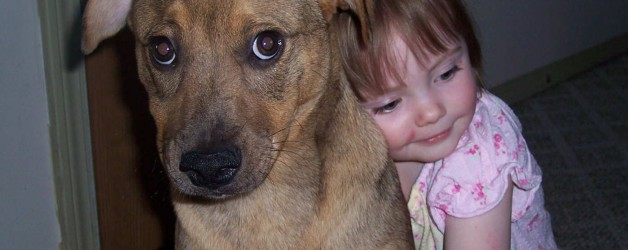 How to Hug your Dog – and other ways to share how much you love them